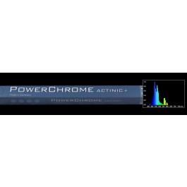 POWERCHROME T5 ACTINIC+