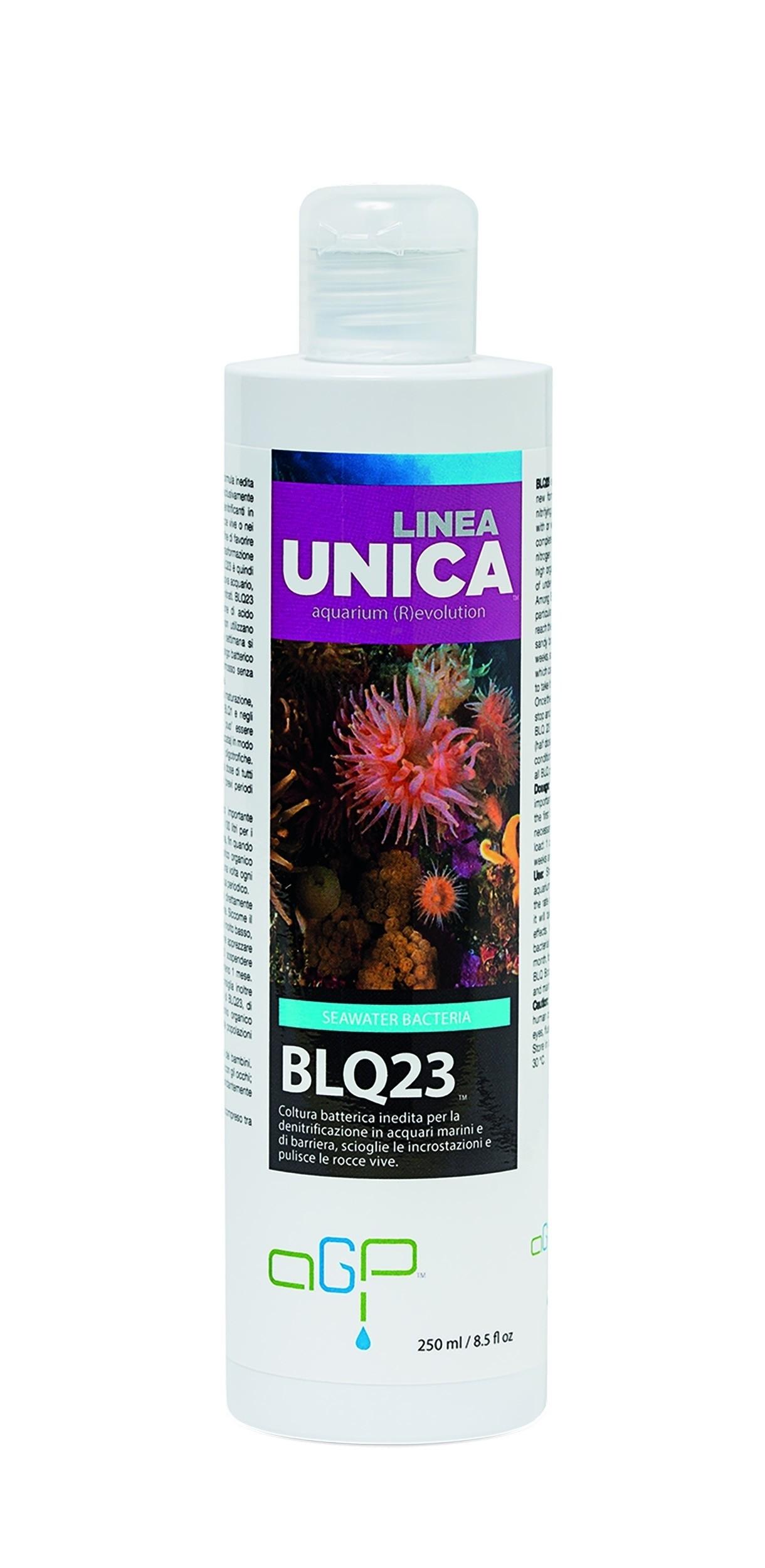 BLQ23