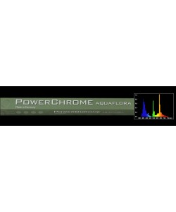 POWERCHROME T5 AQUAFLORA
